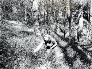 west sussex record office/george garland/picking bluebells may 1946